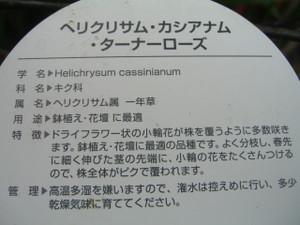 2012_0306_020333cimg0119