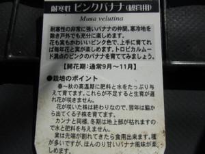 2012_1211_093409cimg5887